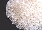 「安全・安心」な美味しいお米を食卓へ