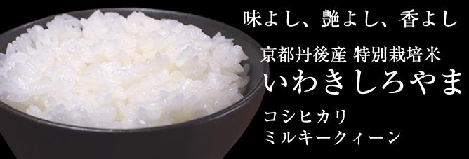 京都丹後産特別栽培米を販売いたします